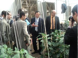 زيارة وفد من الصين لكلية الزراعة بمشتهر جامعة بنها