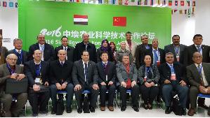 رئيس جامعة بنها يرأس المنتدى الصينى  المصرى خلال زيارته للصين
