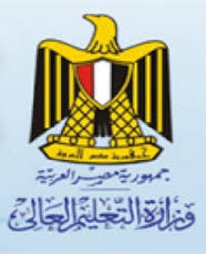 مبادرة التعليم العالى لمنح الدراسات العليا للمهنين المصريين
