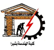 Mustafa EL-Sayed and Ali Nasr as professors in the faculty of engineering/ Shubra