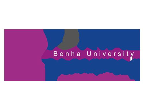 مشروع البوابة الإلكترونية لجامعة بنها يحصل على 100% بتقييم المجلس الأعلى للجامعات