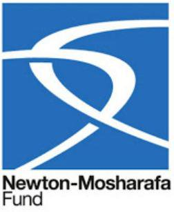 Newton Mosharafa announces .. Leaders in Innovation Programme 2017/2018