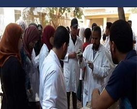 في قافلة طب بيطري بنها بقرية الحصة: الكشف بالسونار وإجراء العمليات الجراحية مجانا