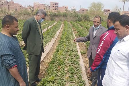 في إطار دورها المجتمعي: جامعة بنها تنظم قافلة زراعية بقرية الدير بطوخ