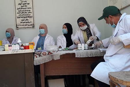 ضمن مبادرة حياة كريمة: جامعة بنها تنظم قوافل بيطرية بقرى شبين القناطر
