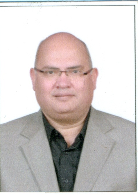 Hassan Mohamed Mahmoud Bahrawy