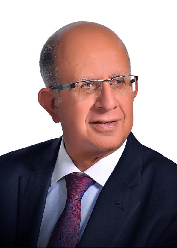 Aly Moustafa Kamel Marghani