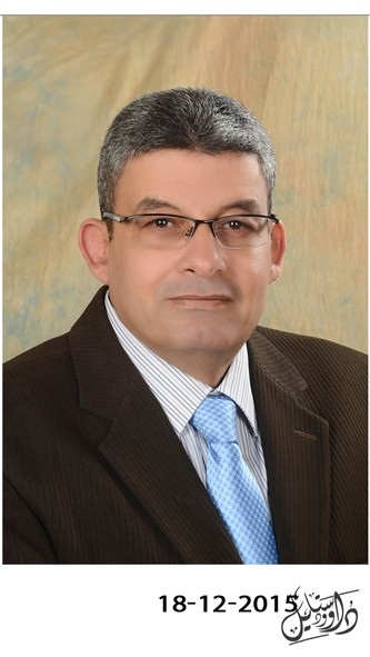 Elsayed Roshdy Mohammed Yaseen