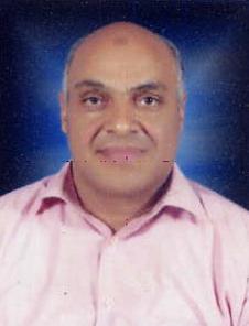 Salah El-Sayed Abdo Ramadan