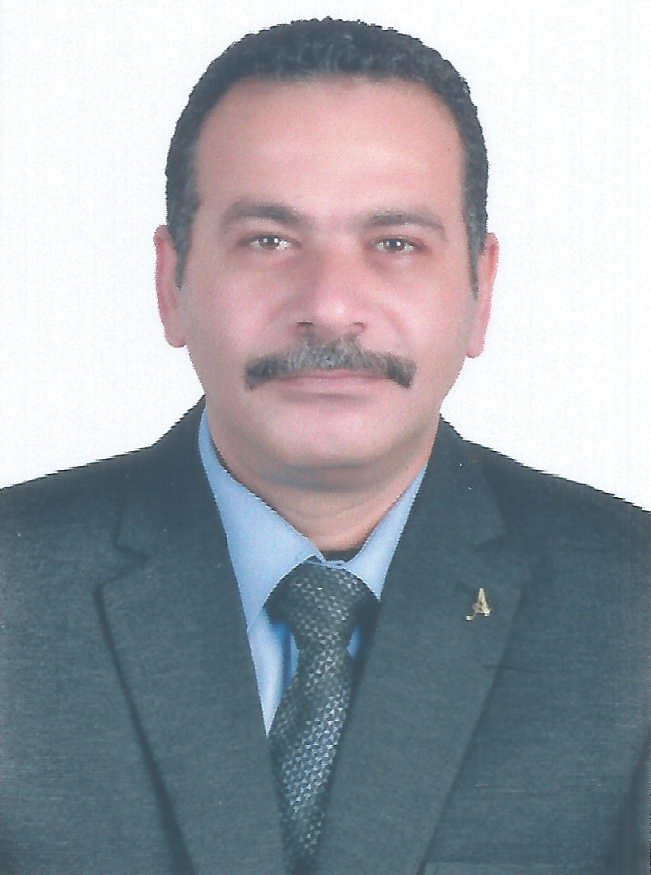 Ahmed Anwar El Elsayed Mohamed