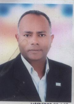 Hamdy Mohamed Ali Mahmoud