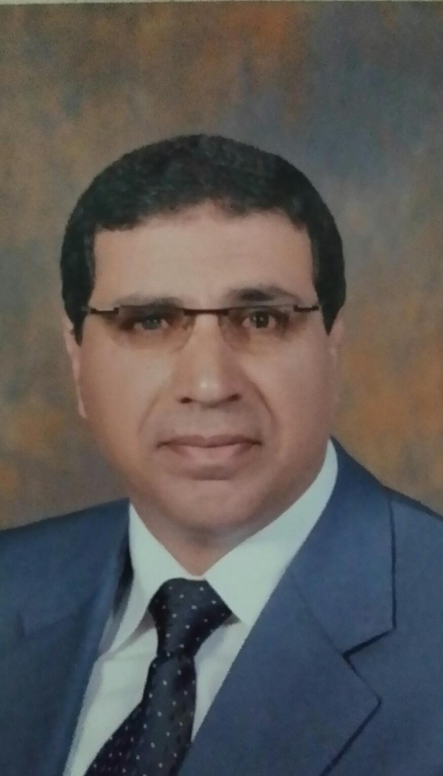 Gamal mohamed abdelrahman elsayed