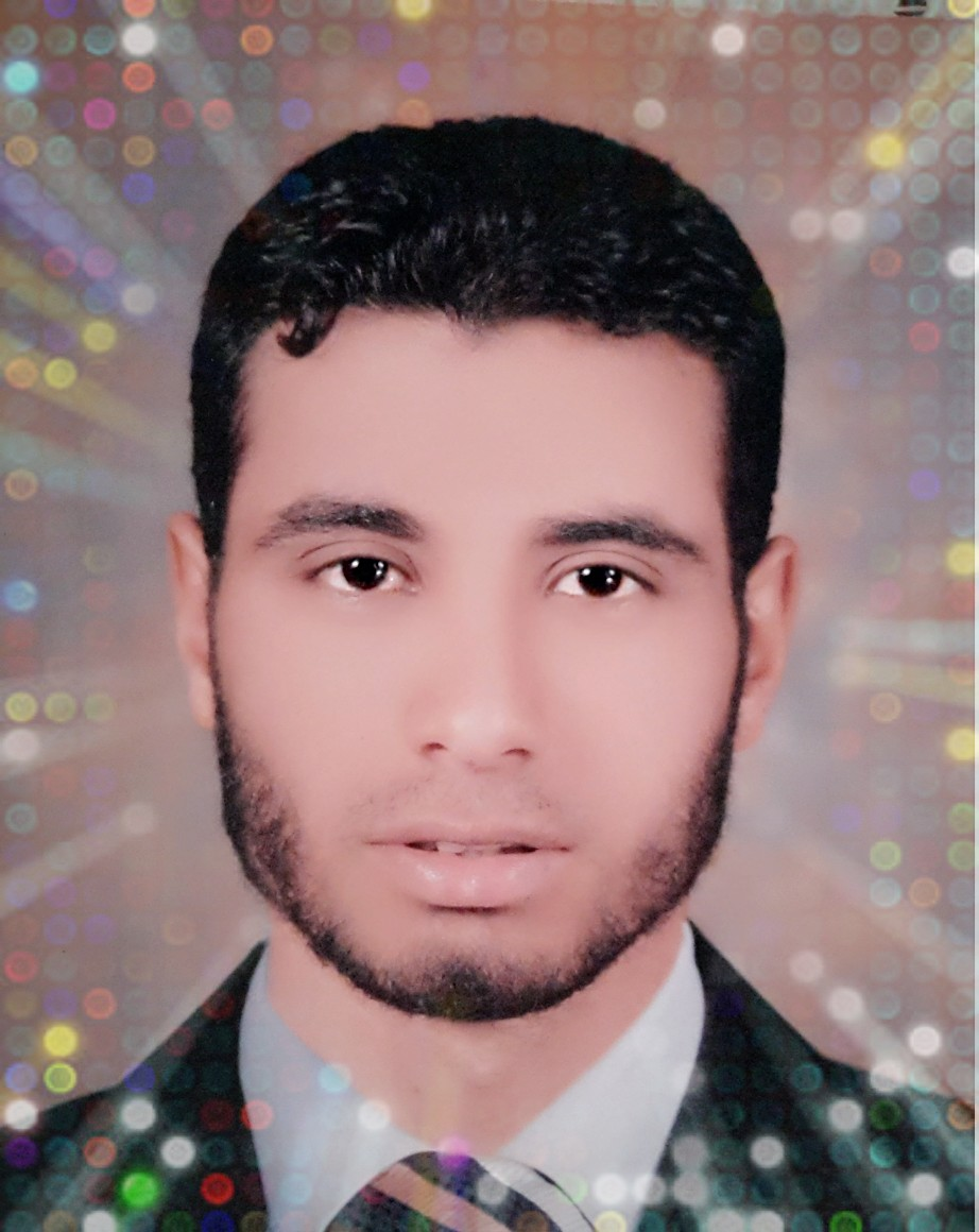 Mohamed Abdallah Abdel-Aty Ali