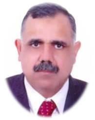 Alaa El-Sayed  Abdel ghaffar